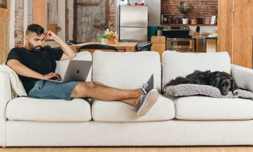Best Futon Couch